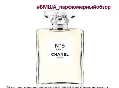 Парфюмерный обзор аромата Chanel N5 L'eau