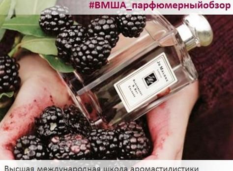Парфюмерный обзор аромата Blackberry & Bay от Jo Malone London