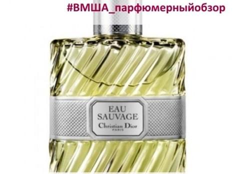 Парфюмерный обзор аромата Eau Sauvage Christian Dior