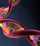 rna_banner_for_news.png