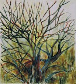 Árvore, 2007