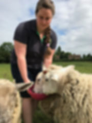 Laura And Sheep
