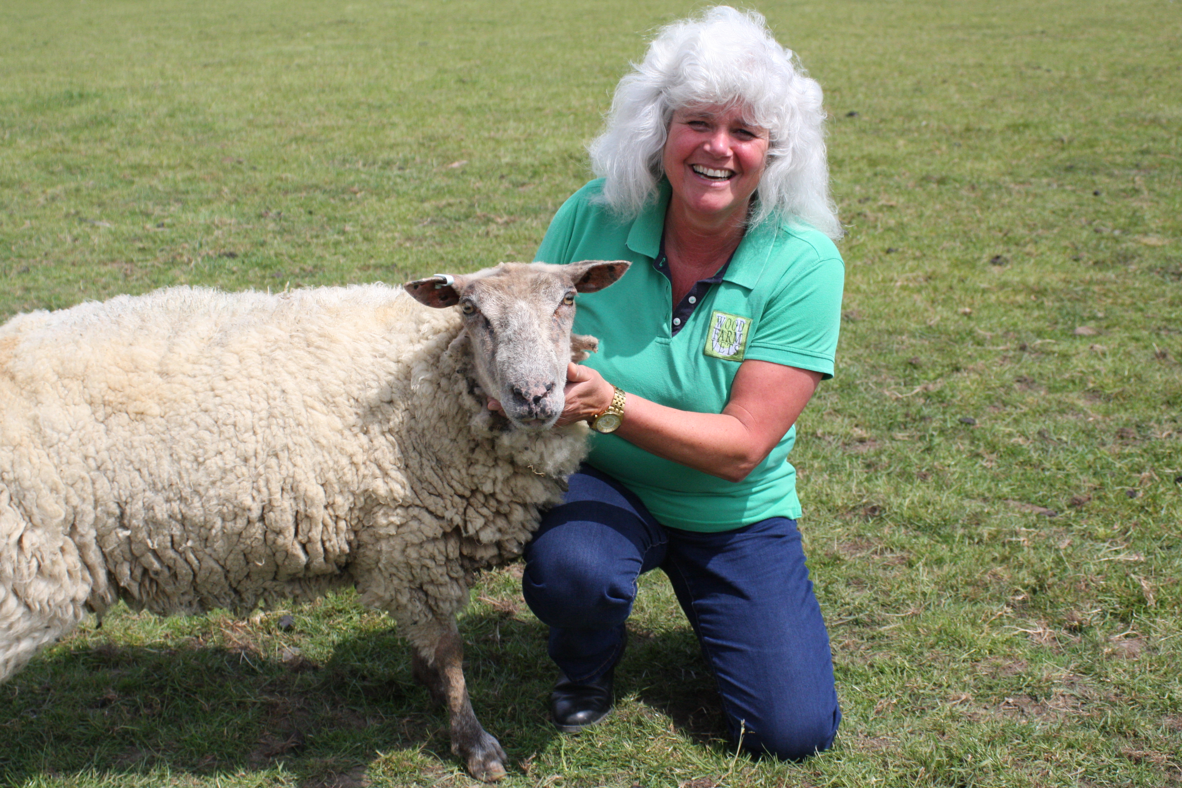 Lynnie and sheep patient