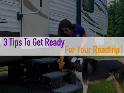 3 tips for an epic road trip with your dog!