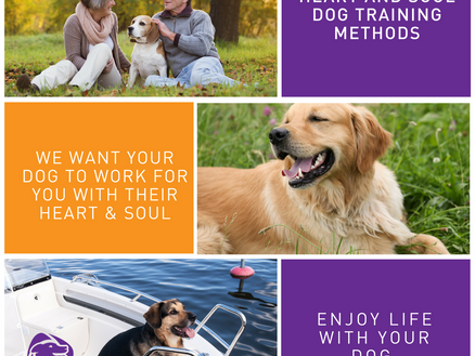 Heart and Soul training methods