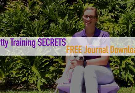 Fast and easy SECRETS to potty training a puppy or foster dog