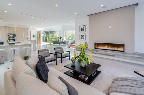VG I Living & Fireplace
