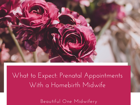 What to Expect: Prenatal Appointments with a Homebirth Midwife