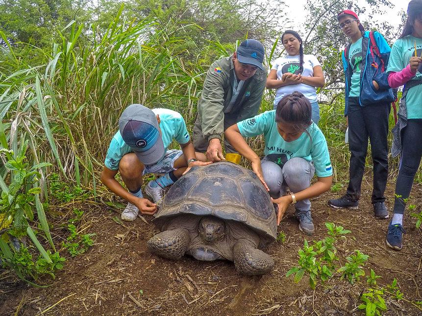 Galapagos 2019 field season (33) (1).jpg