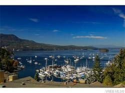 Active Marine Views