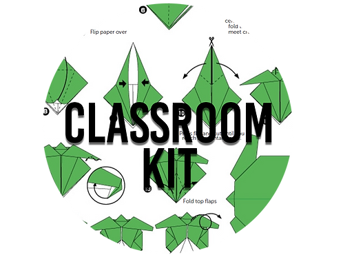 Adopt a Sea Turtle Hatchling- Classroom Kit