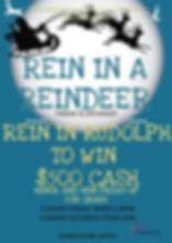 rein in a reindeer.jpg