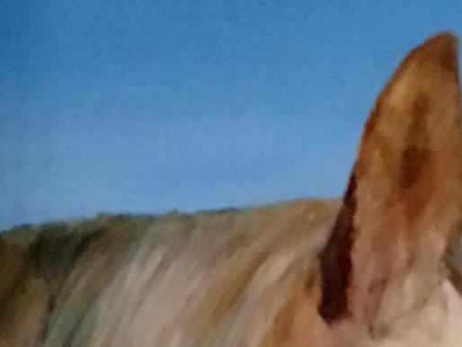 Horsey Art...