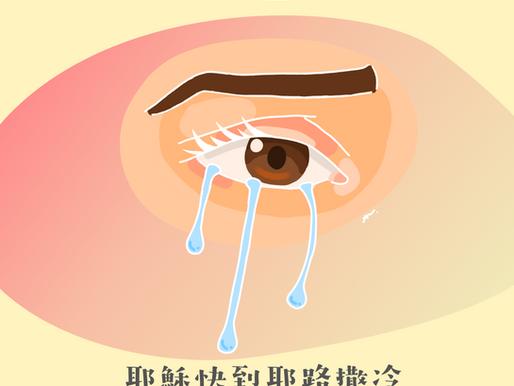 #43 晶瑩洗滌