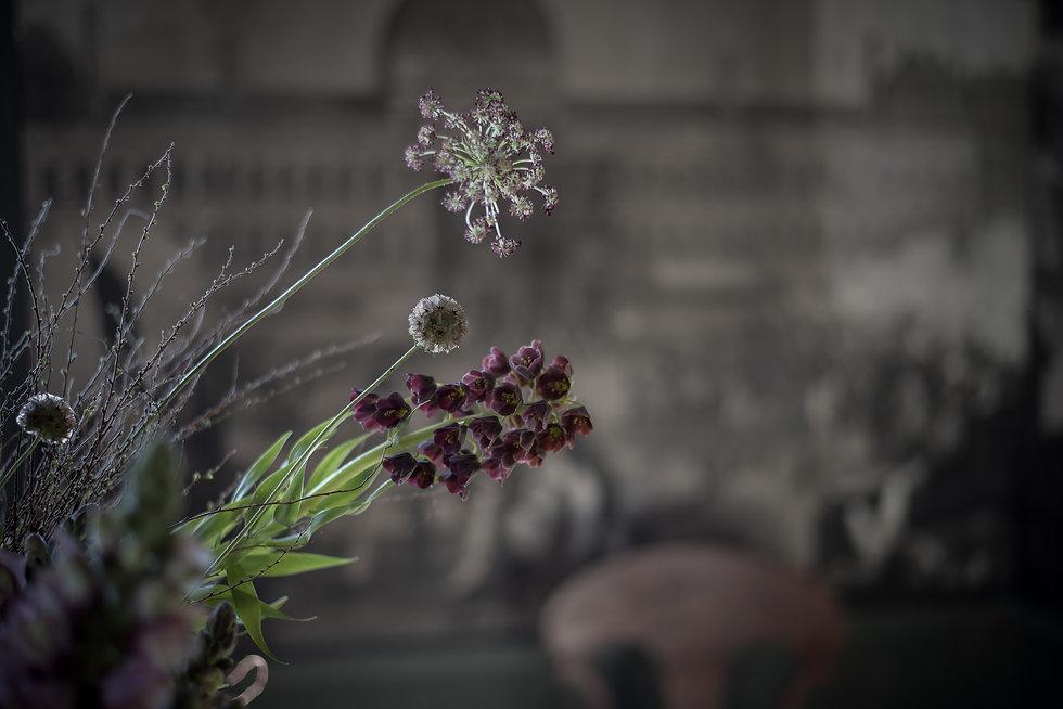 hiddenplaces-flowers-4411.jpg