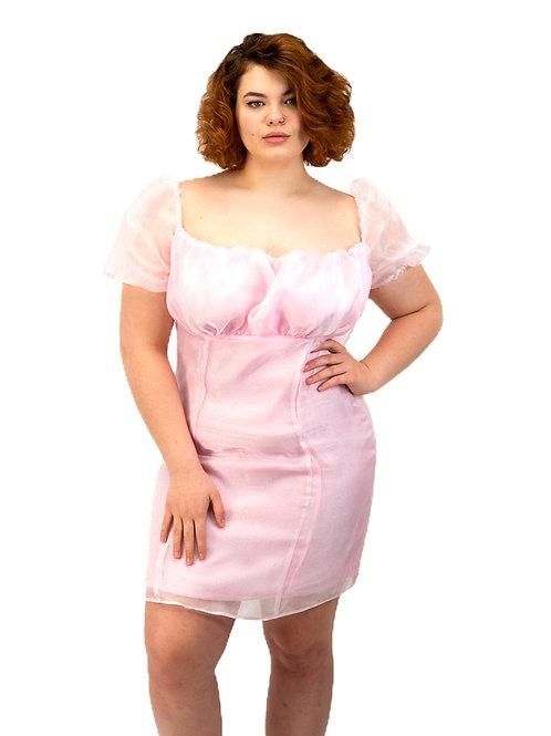 Dreamy Organza Dress