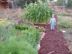 child in sunken bed garden