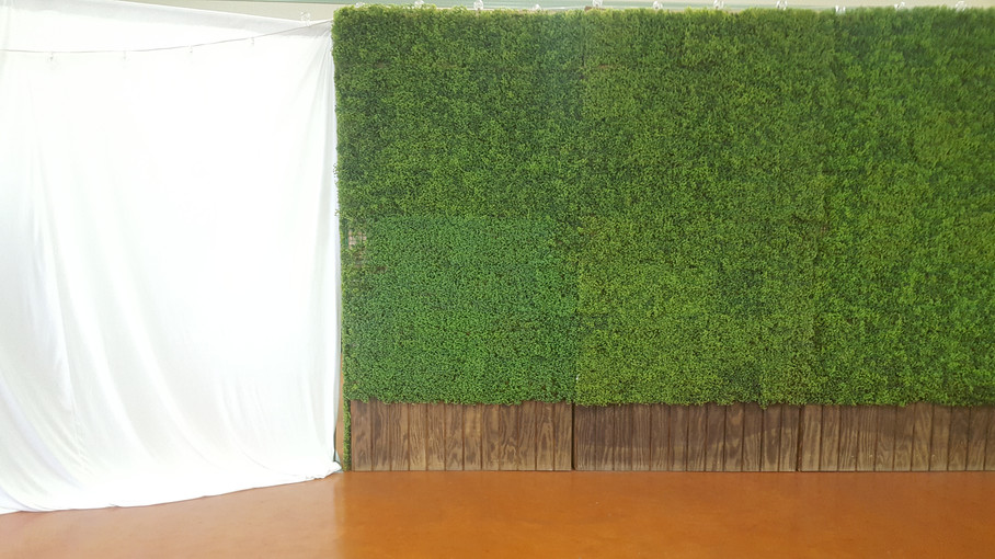 Draping and Green Reclaimed Wood Wall