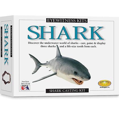 Eyewitness Kits - Shark