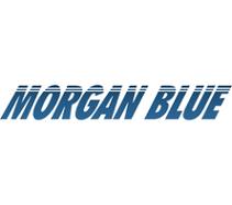 MORGON BLUE.png