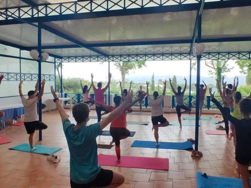 Errores del Fitness 7: Pensar que un Graduado en CCAFD puede impartir Yoga y/o Pilates