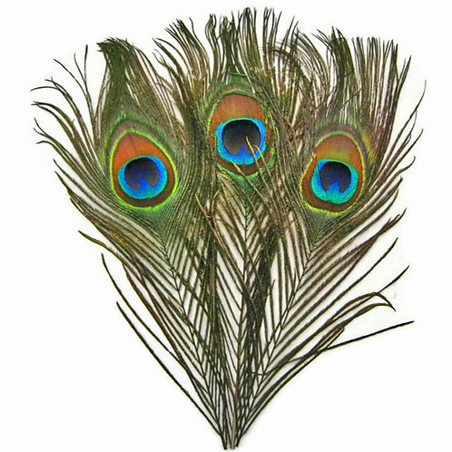 "Percy- Three 23cm (10"") Peacock Eye Plumes to Create Hat Mount - Natural Colours"