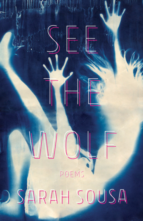 See the Wolf Named 'Must Read Book' in 19th Annual Massachusetts Book Awards