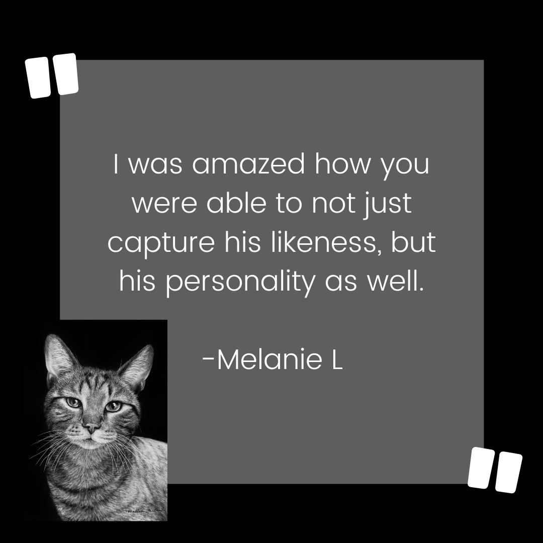 Cat Custom Scratchboard Pet Portrait Testimonial