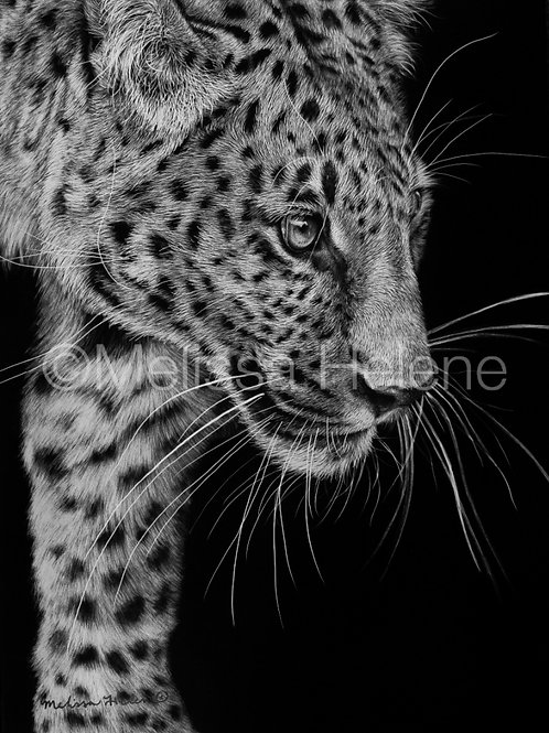 "Leopard | Original | 7""x5"""