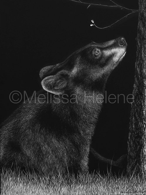 "Black Bear | Original | 12""x9"""