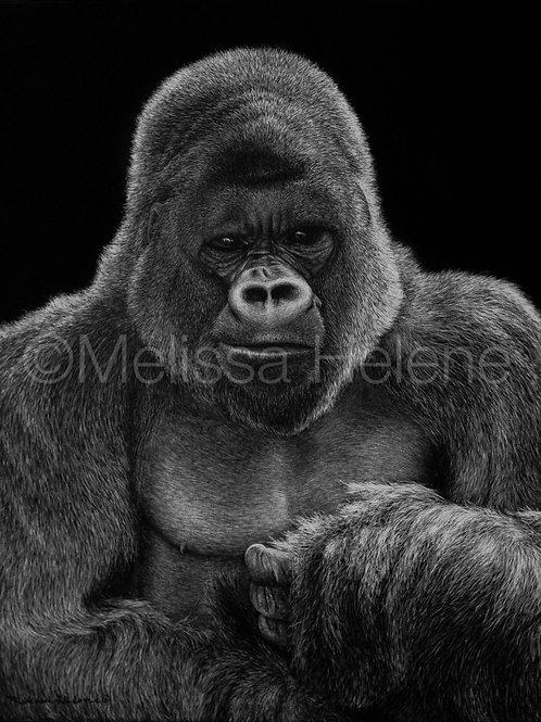 "Mountain Gorilla | Original | 10""x8"""