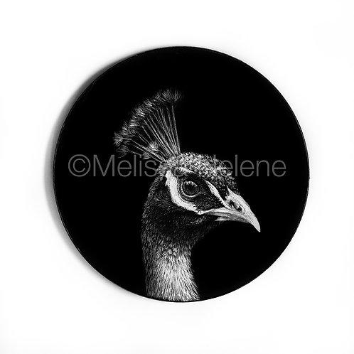 Peacock | Ornament