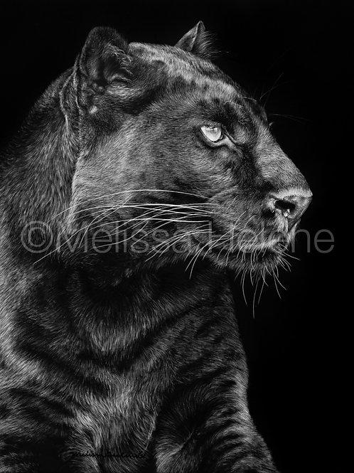 """Black Panther   Original   10""""x8"""""""