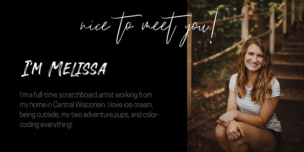Melissa Helene, Wisconsin scratchboard artist, wildlife artist, about the artist, animal artist