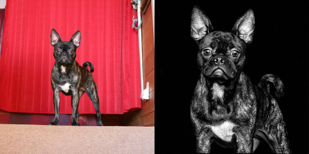 June Bugg collage.jpg