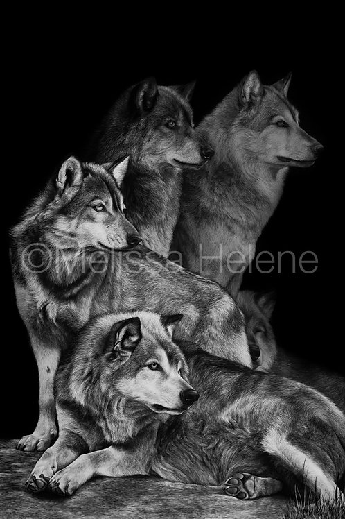 The Watch - Wolf Pack | Reproduction