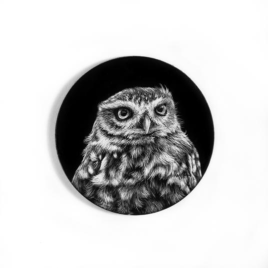 Bird - Owl 5 - ornament.jpg