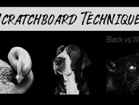 Scratchboard Techniques: Black vs White