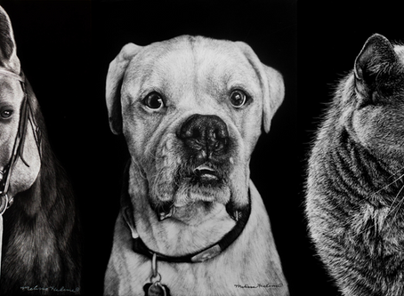 How to Get Your Very Own Custom Scratchboard Pet Portrait