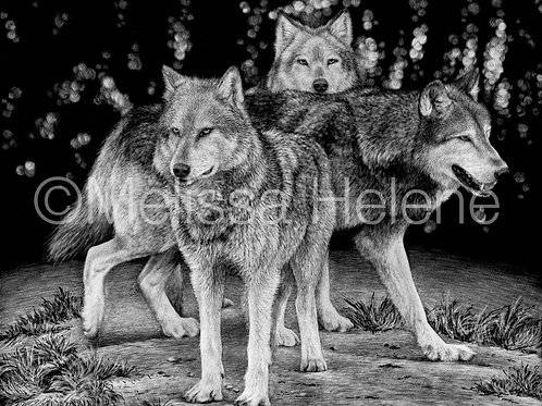 Wolf Pack | Reproduction