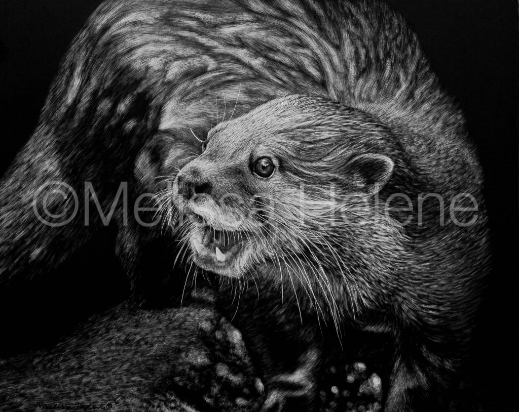 Otter 3 (wm)
