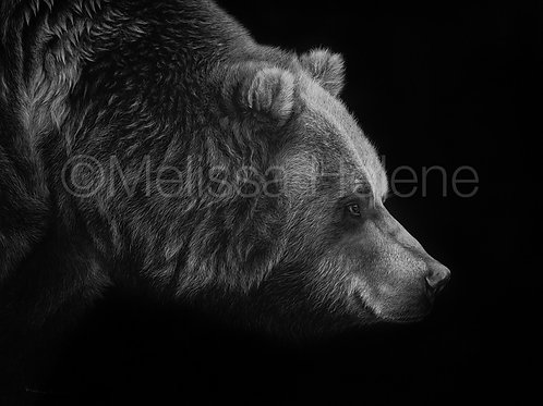 "Grizzly Bear| Original | 14""x18"""