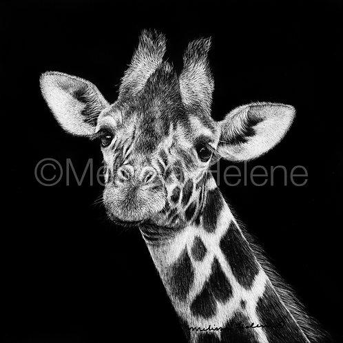 """Giraffe   Original   5""""x5"""""""