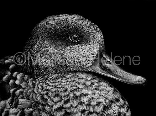 "Duck | Original | 5""x7"""