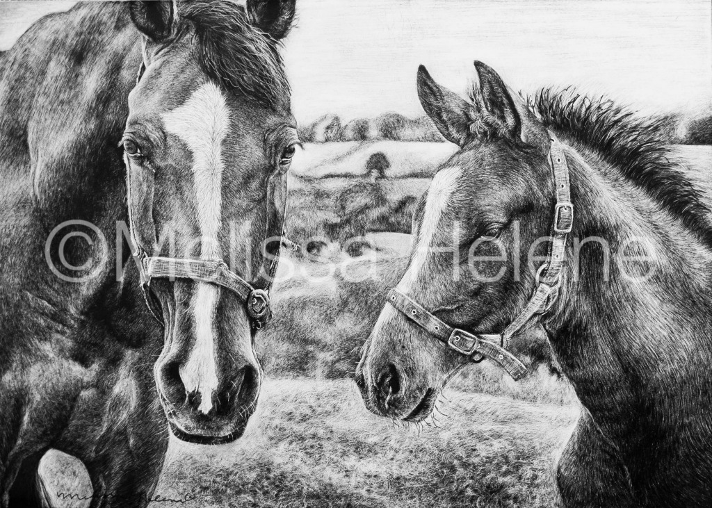 Horses (wm)
