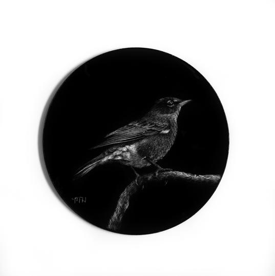 Bird - Robin - ornament.jpg