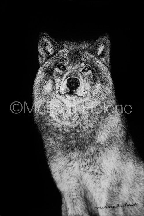 "Wolf | Original | 6""x4"""