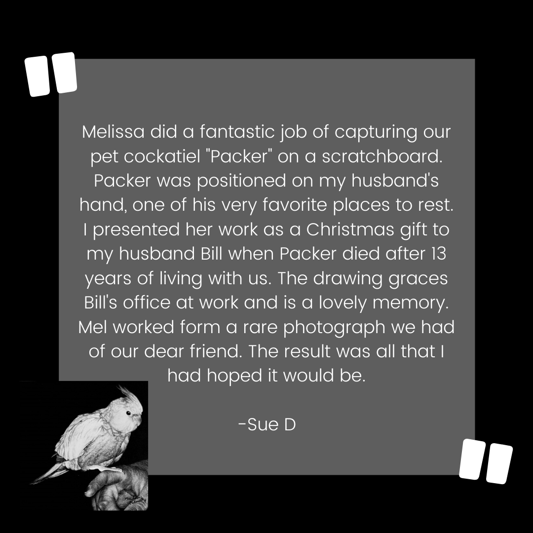 Bird Custom Pet Portrait Testimonial