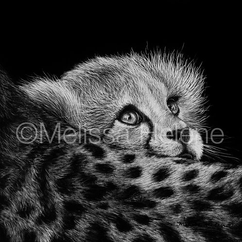 "Cheetah Cub | Original | 5""x5"""