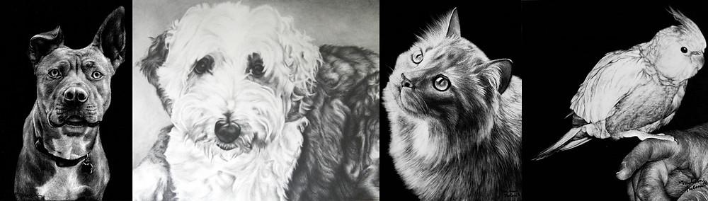 Pet portrait collage.jpg